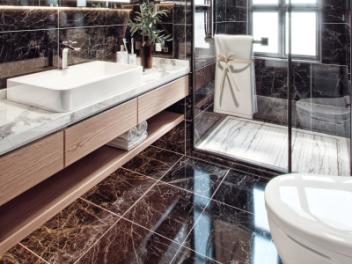 现代奢华卫生间浴室模型