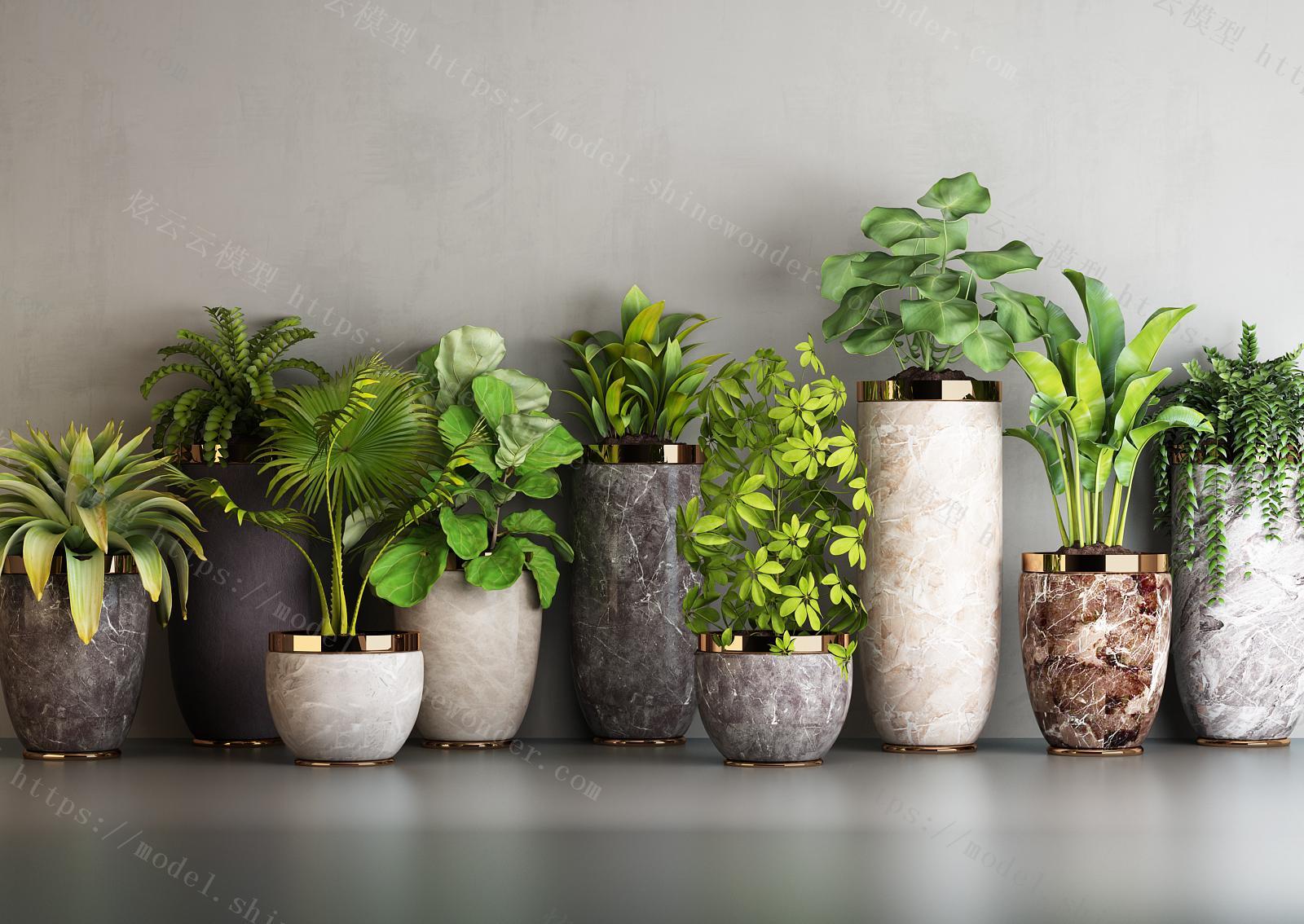 现代绿植组合模型