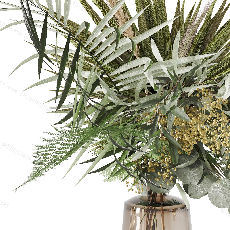 现代植物模型